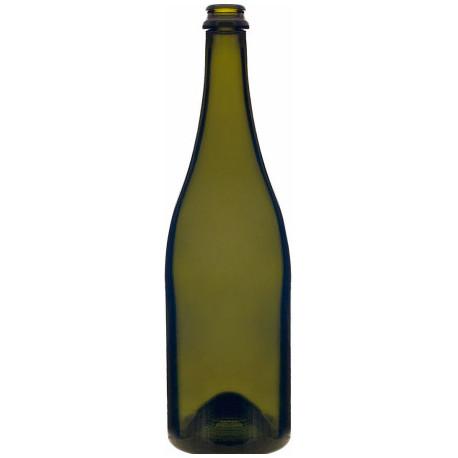 Bottiglie Champagne