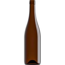 Bottiglie vino Champagnotta Anonima